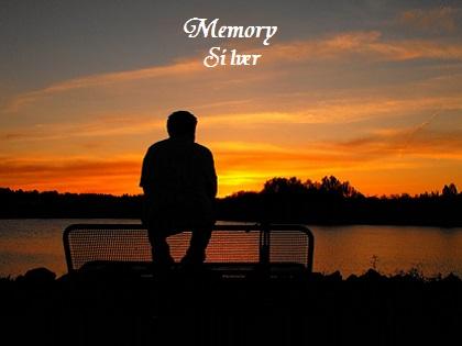 Memory - Silver
