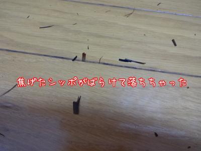 XH__Phb3n8qfwmR1436175751_1436175878.jpg