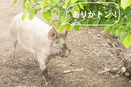 15622ishida309.jpg