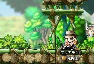 Maple13005a.jpg