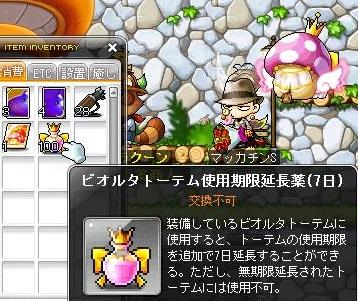 Maple13077a.jpg