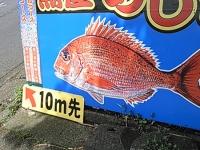 fujiato1.jpg