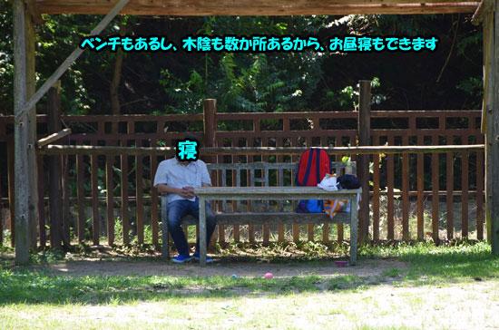 DSC_0049_20150721154501a5e.jpg