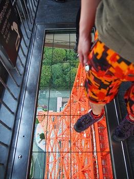 Tokyo-Tower241.jpg