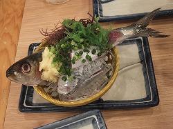 akasaka-marutomi15.jpg