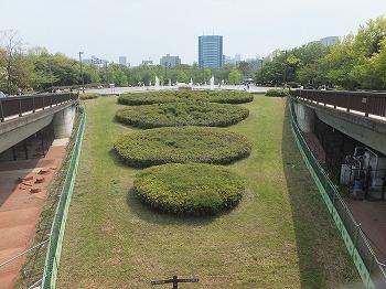koto-kiba-park50.jpg
