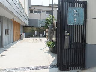 koto-street122.jpg