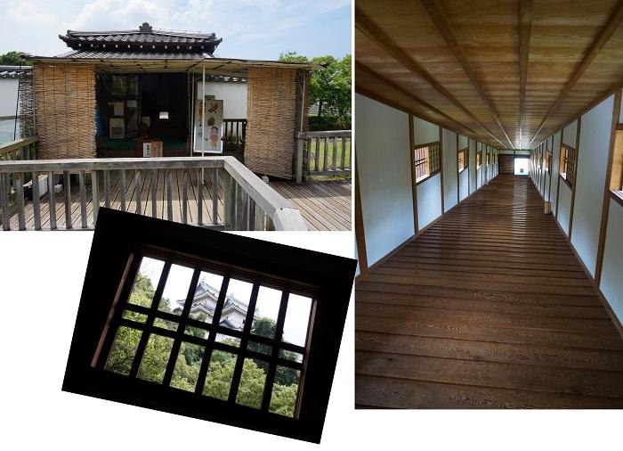 fukayamahoudai1506-037b.jpg