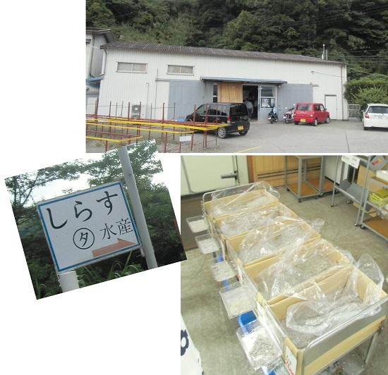 fukayamahoudai1506-054b.jpg