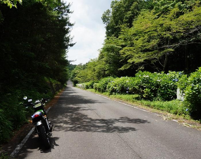 yamazoetannsaku1507-017b.jpg