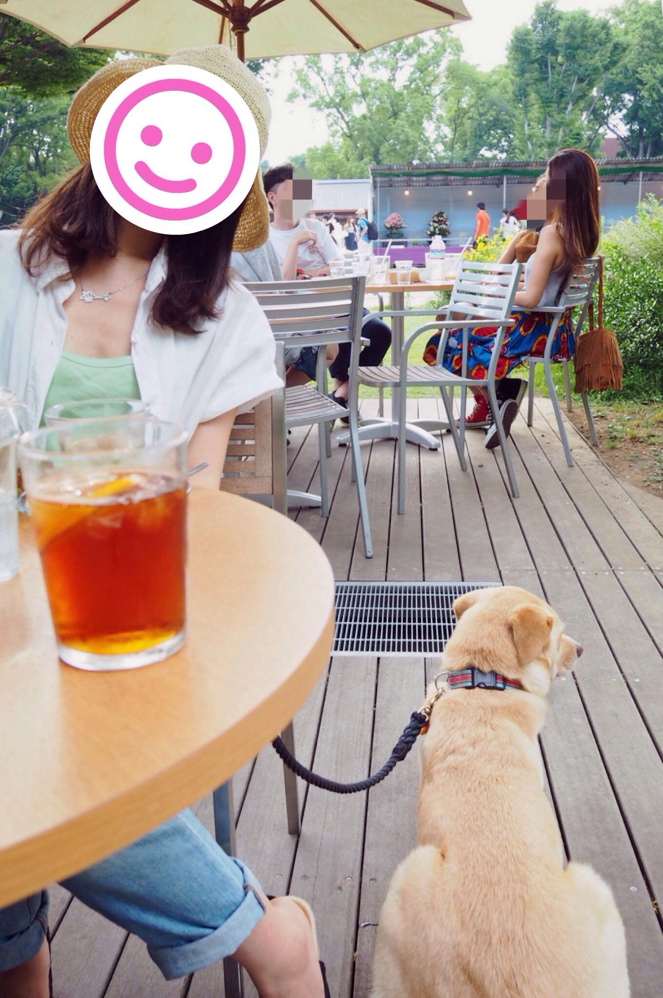 パークサイドカフェ わんこ 犬