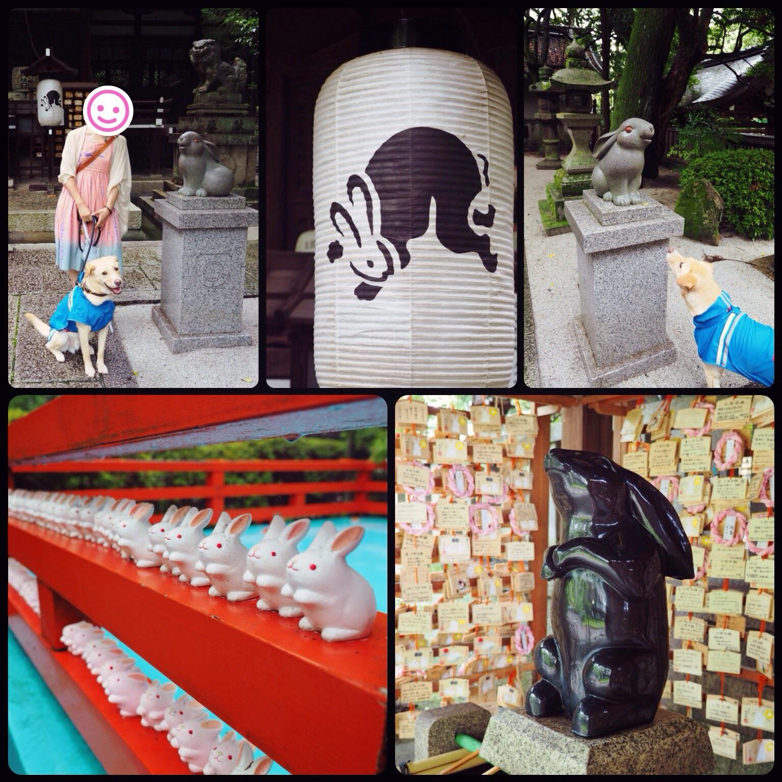京都旅行 わんこ 岡崎神社