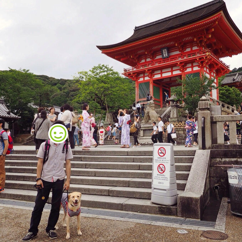 清水寺 わんこ 大型犬