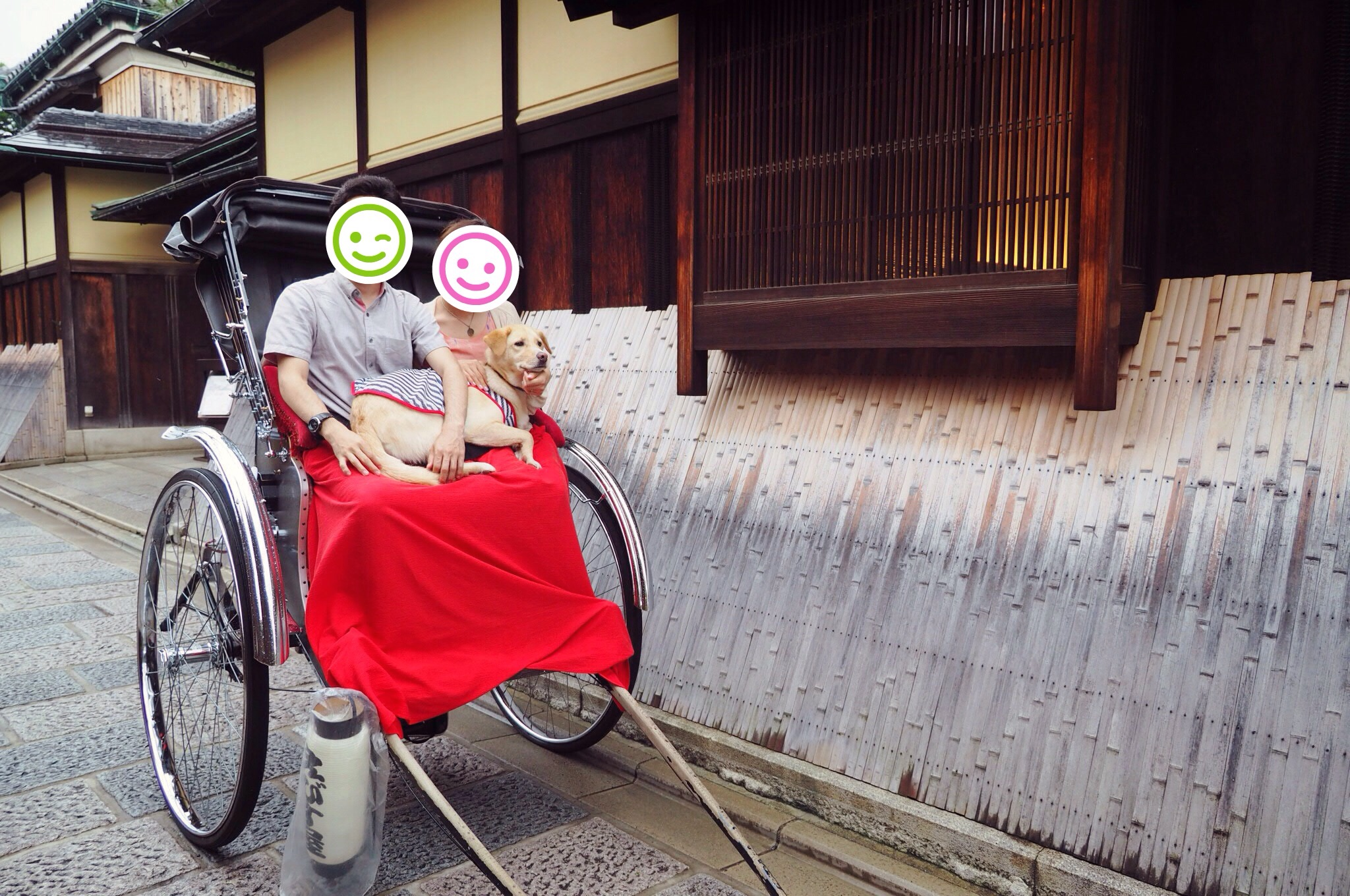 京都 人力車 わんこ