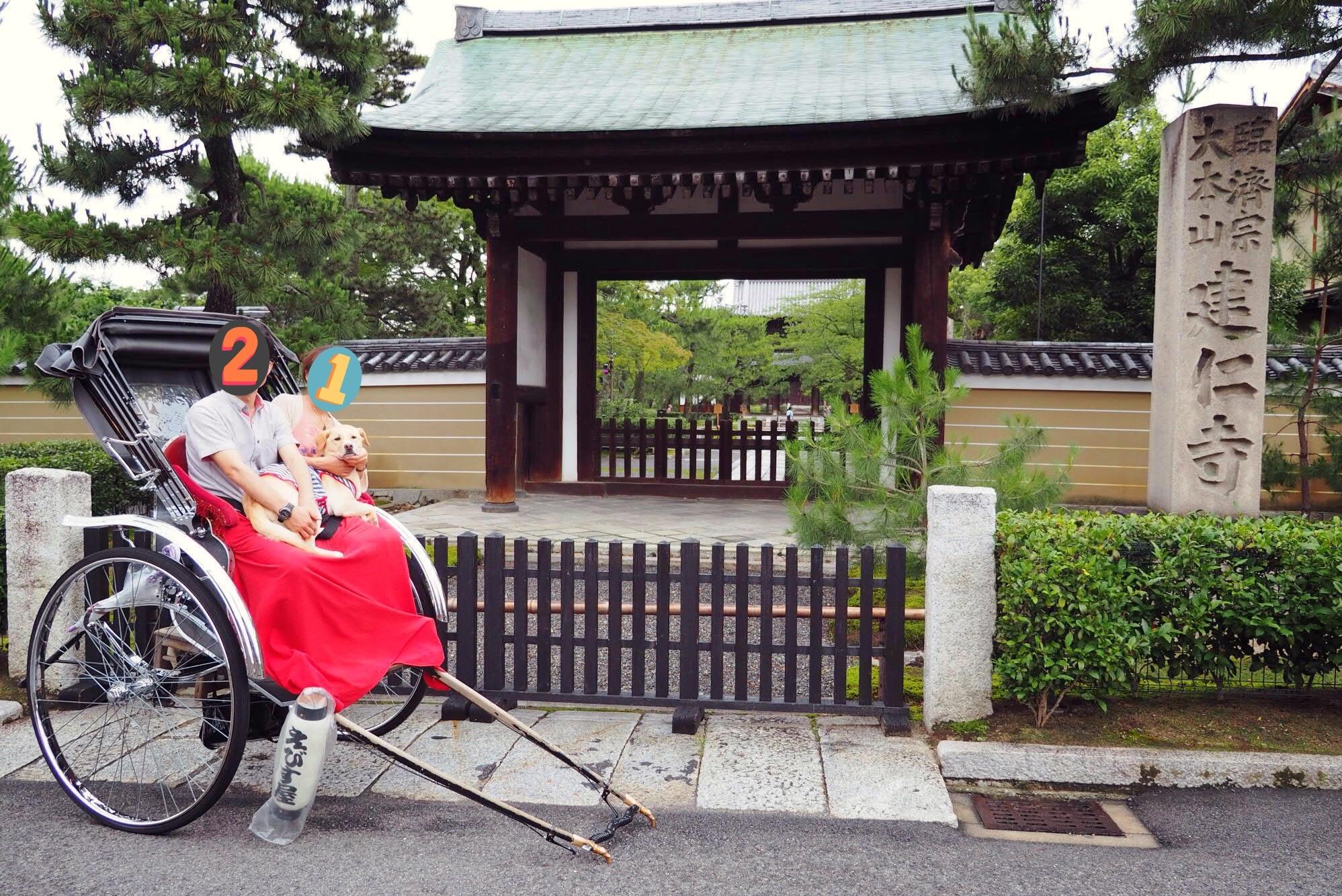 京都旅行 犬 人力車