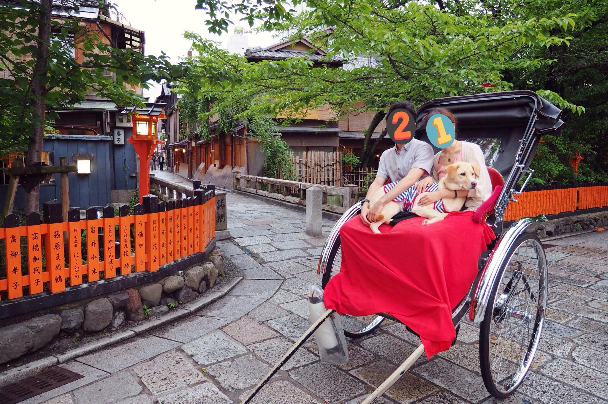 京都旅行 犬 わんこ 大型犬 人力車