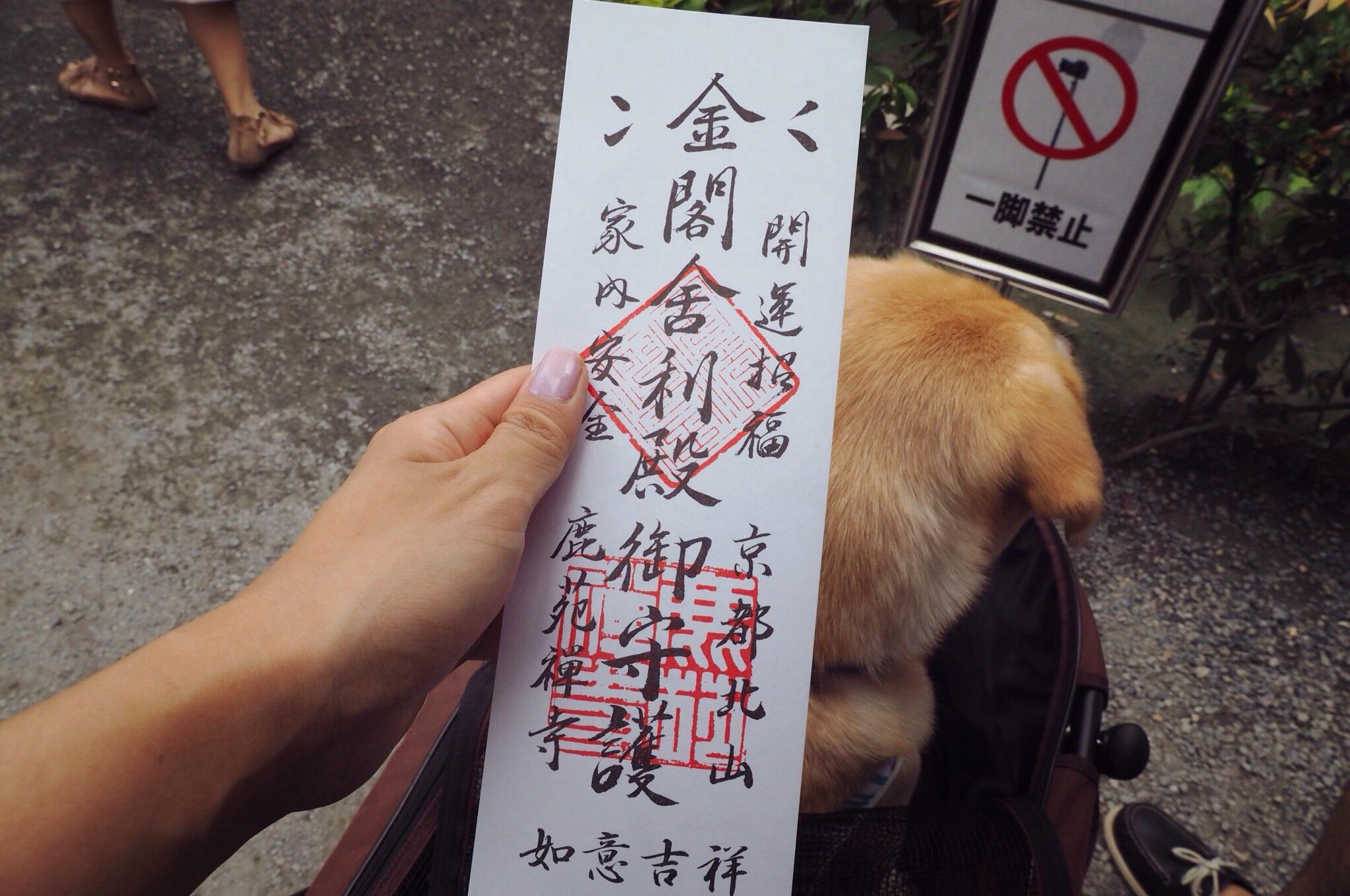 京都旅行 大型犬 わんこ 金閣寺