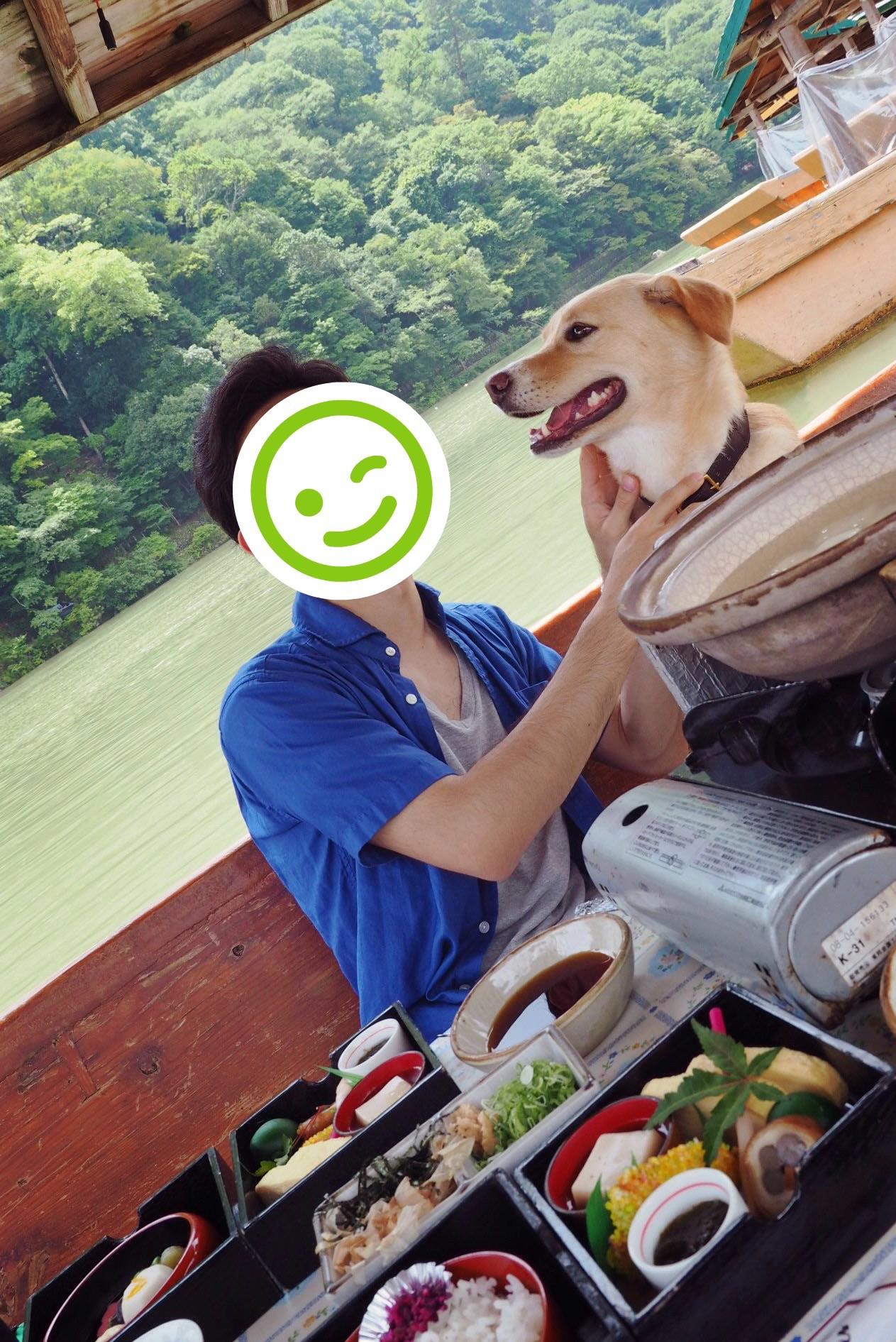 嵐山 屋形船 犬 わんこ