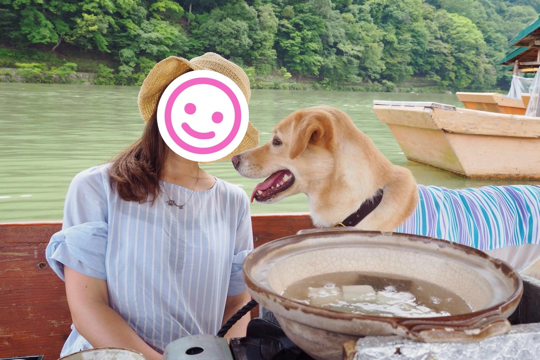 嵐山 屋形船 大型犬