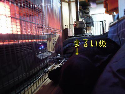 b20150103-DSCN8134.jpg