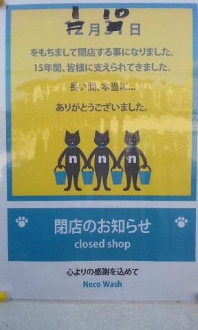 141230 猫ウオッシュ閉店 ブログ