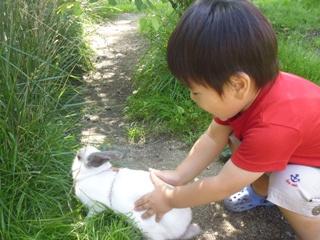 ブログ2 0713那須 (9)