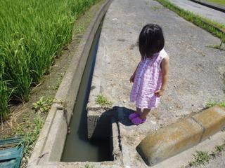 ブログ2 0720水遊び (2)