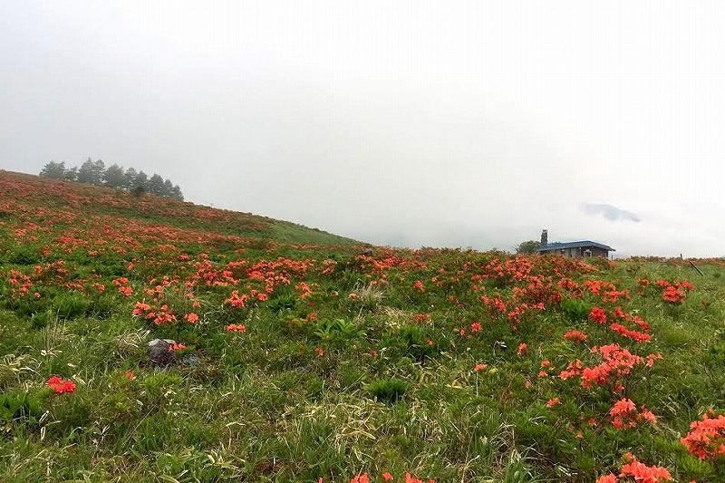 s-2015-0616 霧ヶ峰