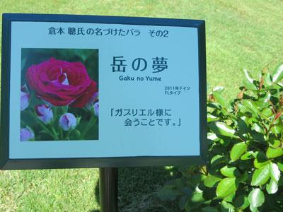 gakunoyume2015-7.jpg