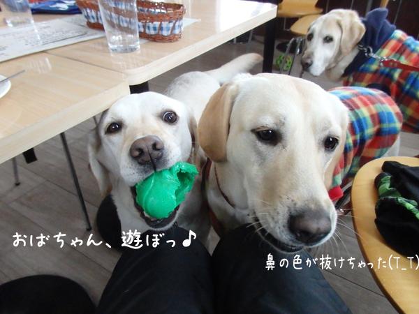 cafe_20150106204924f88.jpg