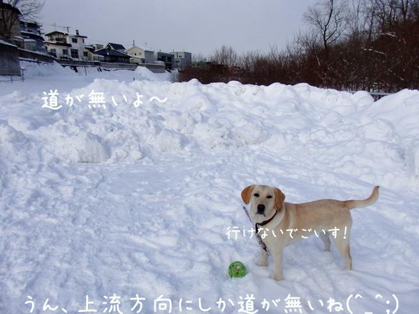 kasensiki_201412292204151e8.jpg