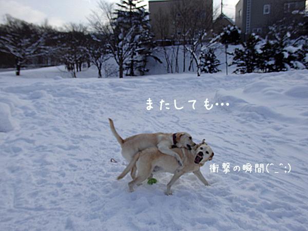 marukao_20141229220424eb1.jpg