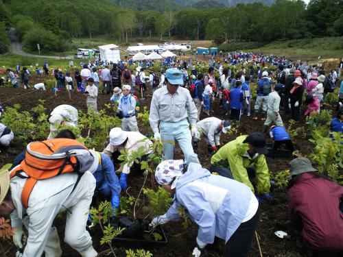 1300人が植樹(27.6.27)
