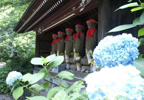 六地蔵と紫陽花(27.6.28)
