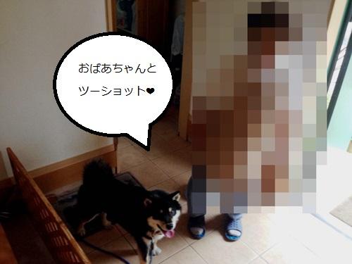 まるちゃん2015062401