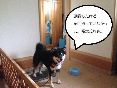 まるちゃん2015062405