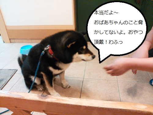 まるちゃん2015062407