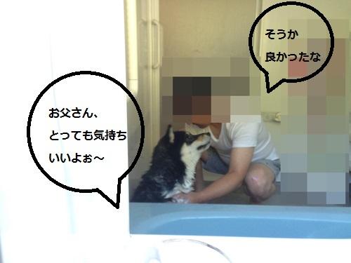 まるちゃん2015072601