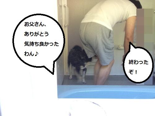 まるちゃん2015072606