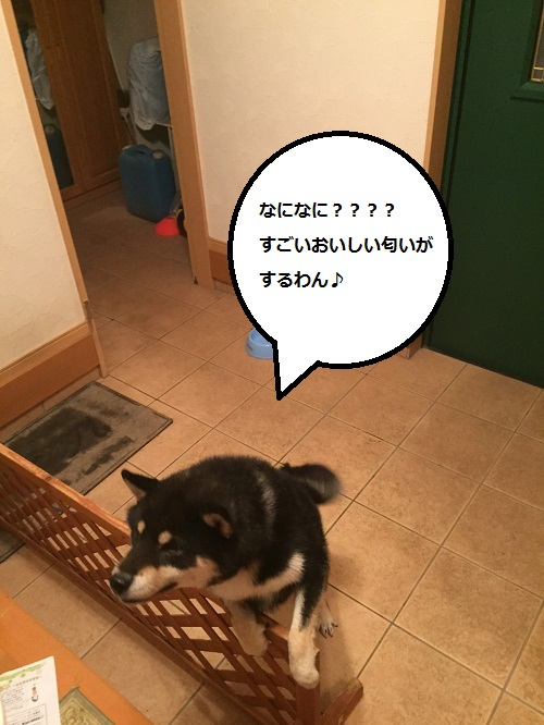 まるちゃん2015072402