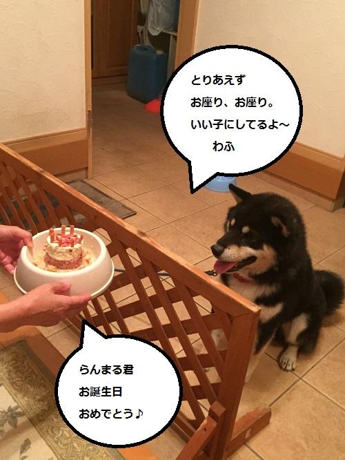 まるちゃん2015072404