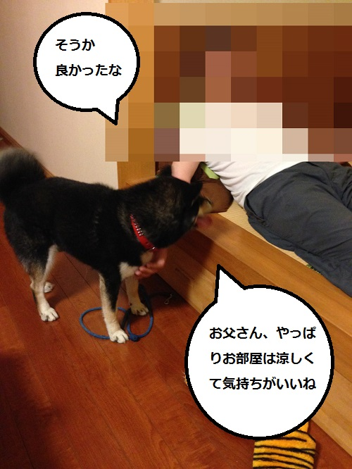 まるちゃん2015073101