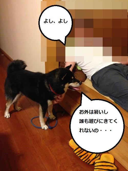 まるちゃん2015073102