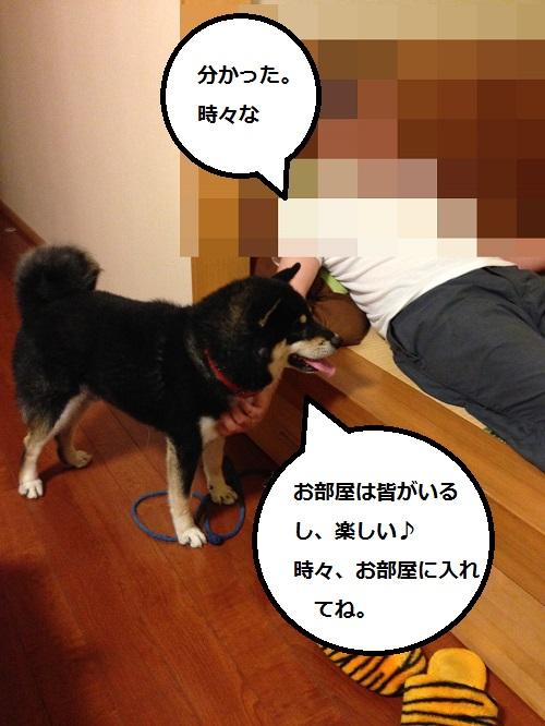 まるちゃん2015073103