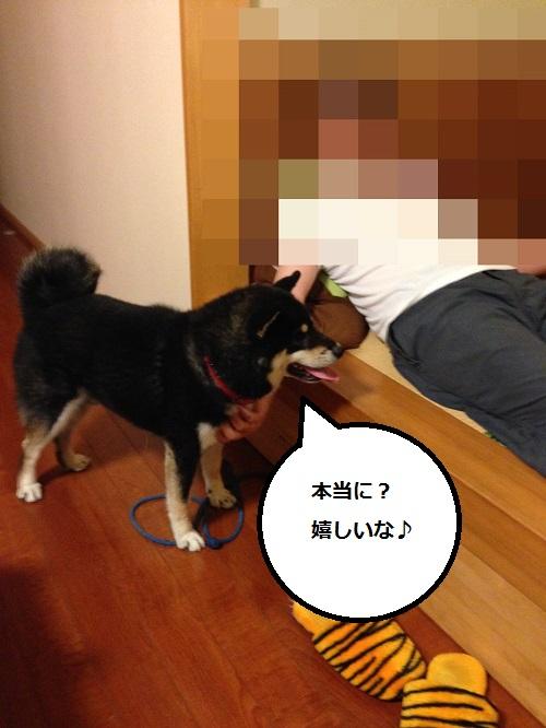 まるちゃん2015073104