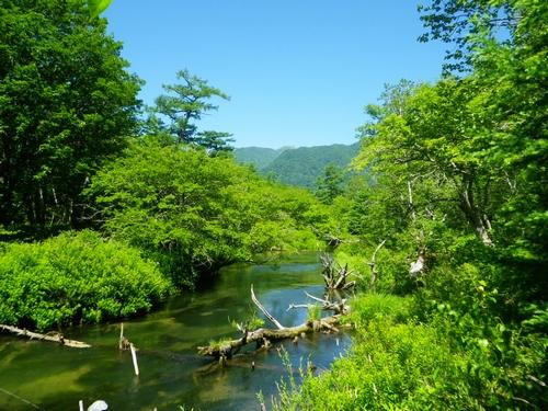 2015711湯川釣行 (8)