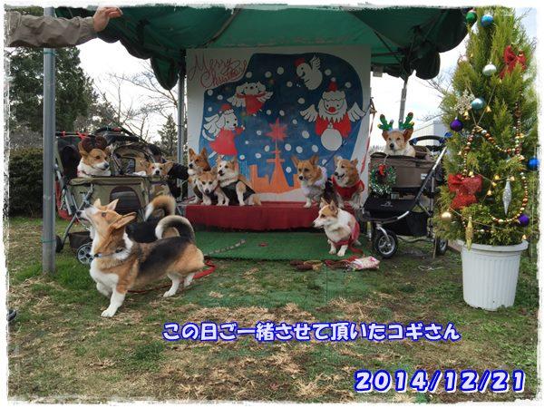 20141221-1.jpg