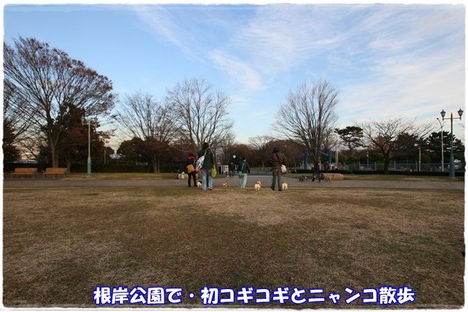 20141231-2.jpg