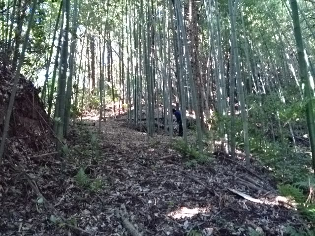 一ノ宮-46