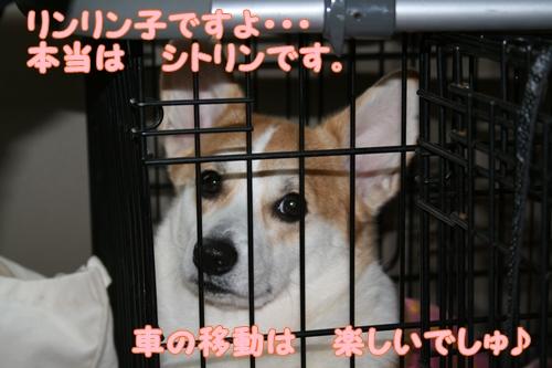 神戸遠征044